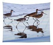 Take It In Stride Tapestry