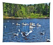 Taking Flight In Ontario Tapestry