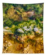 Taking The Beach Hot Springs Tapestry