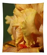 Tall Bearded Iris Named Penny Lane Tapestry