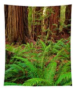Tall Trees Grove Tapestry