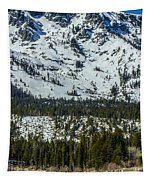 Tallac View Tapestry