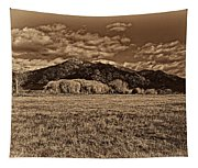 Taos Mountain In Platinum  Tapestry