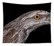 Tawny Frogmouth Tapestry