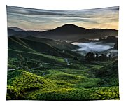 Tea Plantation At Dawn Tapestry