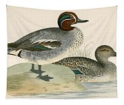 Teal Tapestry