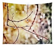 Teardrops Of The Nature Tapestry