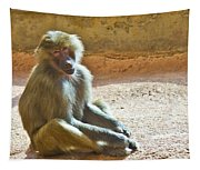 Teen Baboon Tapestry