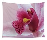 Temptation - Pink Cymbidium Orchid Tapestry
