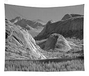 6m6552-bw-tenaya Lake Yosemite Bw  Tapestry