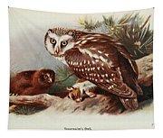 Tengmalms Owl Tapestry