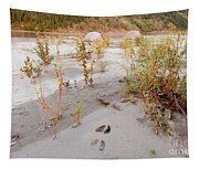 Tents At Yukon River In Remote Taiga Wilderness Tapestry