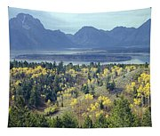 1m9209-tetons From Signal Mountain, Wy Tapestry
