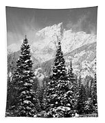 Tetons In Snow Tapestry