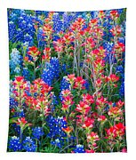Texan Quilt Tapestry