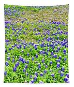 Texas Beauties Tapestry