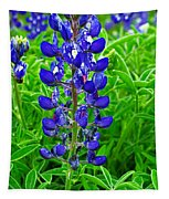 Texas Blue Bonnet Tapestry