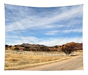 Texas Canyon In February Tapestry