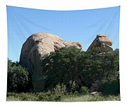 Texas Canyon Megaliths  Tapestry