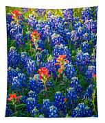 Texas Colors Tapestry