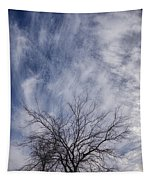 Texas Winter Clouds Tapestry