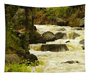 The Amsden River Wyoming Tapestry