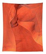 The Antelope Slide Tapestry