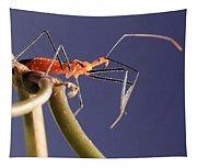Garden Assassin Bug Tapestry