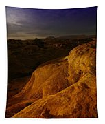 The Beauty Of Canyonlands Tapestry