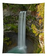 The Brandywine Plunge Tapestry