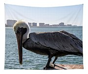 The Brown Pelican  Tapestry