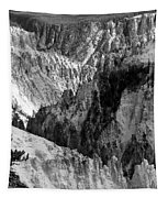 The Canyon Tapestry