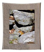 The Chipmunk Tapestry
