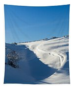 The Colors Of Snow Tapestry