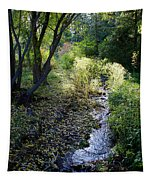 The Creek At Finch Arboretum 2 Tapestry