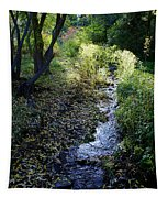 The Creek At Finch Arboretum Tapestry