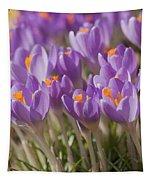 The Crocus Flowers  Tapestry