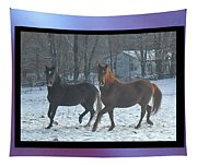 The Dancing Paso Fino Stallions Tapestry