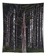 The Deep Dark Sharp Forest Tapestry