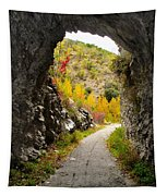 The Fall Cave Tapestry