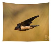 First Swallow Of Spring Tapestry