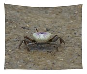 The Fiddler Crab On Hilton Head Island Tapestry