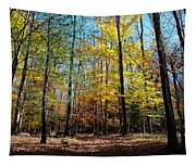The Final Days Of Autumn Color Tapestry