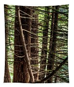 The Forest Combed By The Wind In The Lake Tapestry