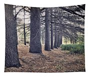 The Forest Of A Thousand Stories Tapestry