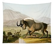 The Gnoo, 1804 Tapestry