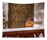 The Grey Squirrel George In Winter Tapestry