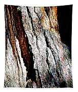 The Heart Of Barkness In Mariposa Grove In Yosemite National Park-california  Tapestry
