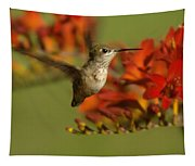 The Hummingbird Turns   Tapestry