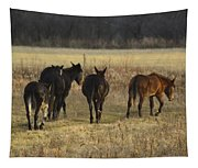 The Jackasses Tapestry
